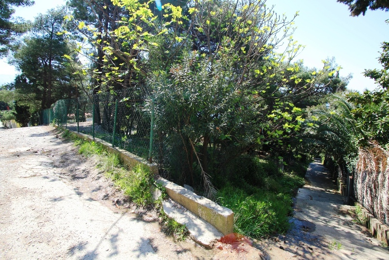 Urbanized plot in Zeleni Pojas