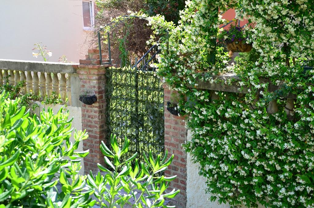 House with a garden in the center of Herceg Novi