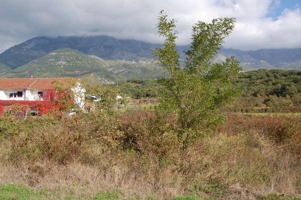Urbanized land plot in Radanovići