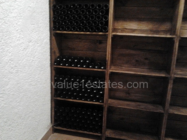 Villa with vineyard in the wine region of Montenegro