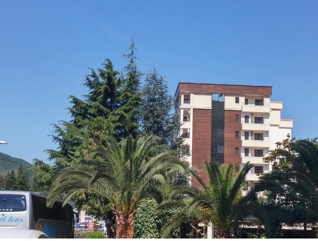 Premises located on the main road in the center of Budva